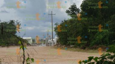 Megagranja porcícola impide inspección Judicial Federal