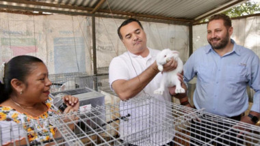 """""""Círculo 47"""" impulsa la cunicultura en comisarías de Mérida"""