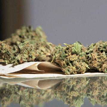 Al Cereso pareja detenida con más de 40 kilos de marihuana