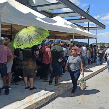 Yucatecos peregrinan hasta 10 horas en la fila en módulo vehicular de la SSP