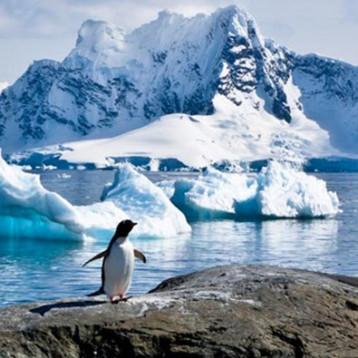 ¿La Antártida se derrite? Por primera vez en la historia, su temperatura supera los 20 grados
