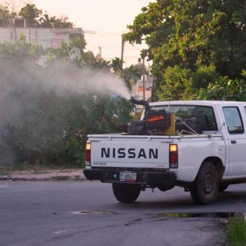 Llaman a no bajar la guardia contra la influenza, dengue, zika y chikungunya
