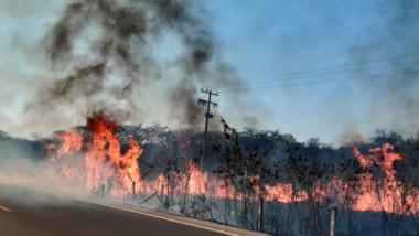 Lluvias ayudan a combatir incendios en Yucatán