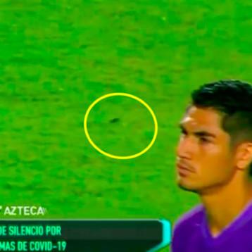 Mazatlán FC y sus 'cucarachas', motivo de burlas de clubes de la Liga MX