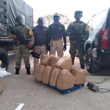 Ejército asegura media tonelada de marihuana en Yucatán