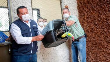 El Centenario de Mérida estrena hospital veterinario