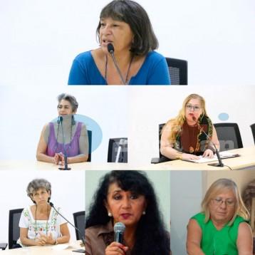 Activistas pro derechos humanos, quedan fuera del Consejo Consultivo de la Codhey