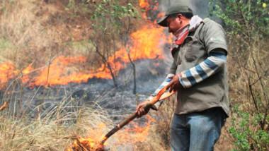 Reportan 24 incendios activos en 11 estados