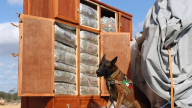 Cómo si fuera mudanza, transportaban más de 450 kg. de drogas