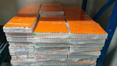Primer lote de la vacuna Cansino contra COVID-19 envasada en México se entregará a partir del 19 de marzo: Ebrard