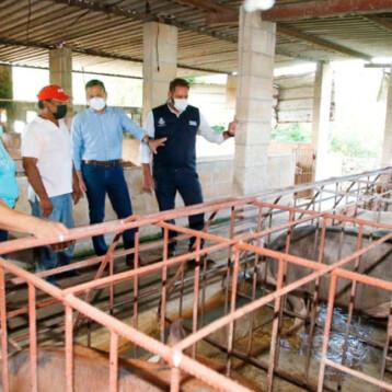 Créditos agropecuarios, respiro de familias de comisarías durante la pandemia