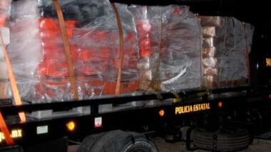 Aseguran más de siete toneladas de pulpo en Dzilam, hay tres detenidos